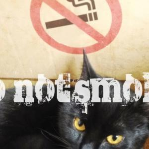 受動喫煙はとても危険です。喫煙者本人だけではなく家族や周りの人の喘息などの疾患の原因になりますし、コロナ感染の可能性を上げます。