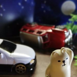 お金と私 自動車保険編
