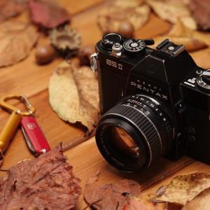 [総利回り:5.89~1.81%]ビックカメラの業績と株主優待制度をまとめました