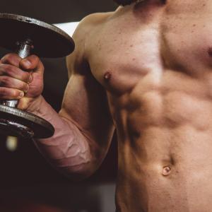 【一般人向け】たんぱく質をたくさん摂れば大丈夫?筋肉をつけたい人が考えるべきたんぱく質摂取の基礎