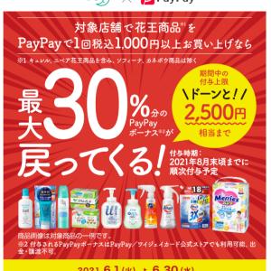 花王×PayPayャンペーンにギリギリ参戦。感想。