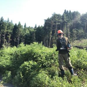 【林業】夏の過酷な下刈作業