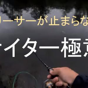 ナイター極意でリリーサー酷使!!【管釣り】【エリアトラウト】【カラー】【釣り方】