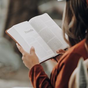 【社会人は本を読もう】今日から本が読みたくなる読書のメリット