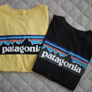 パタゴニアのSALE購入品