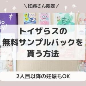トイザらスで無料サンプルセットを貰う方法~妊婦さん必見!~