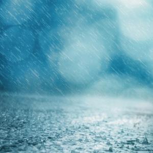 雨の交響曲