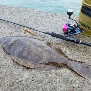 水深のある防波堤からのヒラメ釣りと浅いサーフからのヒラメ釣りのちょっとした違い
