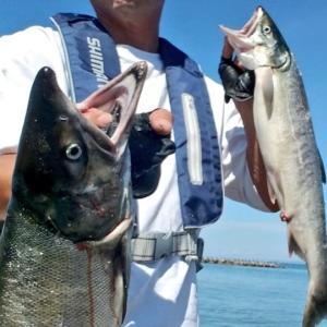 未開拓の釣り場はオスとメスの2尾