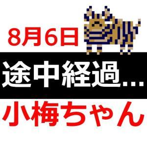 〈運用実績メモ(8/6)〉【メンタルを鍛える短期トレード検証:小梅ちゃん】