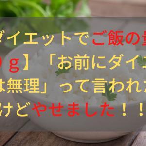 【ダイエットでご飯の量は90g】「お前にダイエットは無理」って言われたけどやせました!!