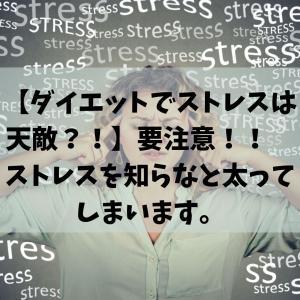 【ダイエットでストレスは天敵?!】要注意!!ストレスを知らなと太ってしまいます。