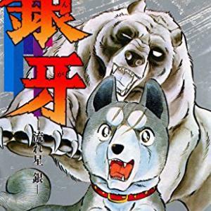 銀牙ー流れ星 銀ー 全18巻(高橋よしひろ・1983-1987)【Luck'o書庫 No.012】あらすじ・ネタバレあり