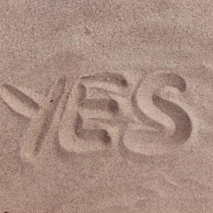 """イエスマン """"YES""""は人生のパスワード 感想・レビュー"""