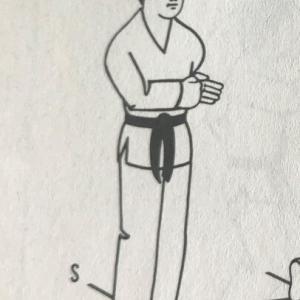 ボクシング と MMA