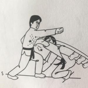有名人ボクシングマッチ Lamar Odom vs Aaron Carter