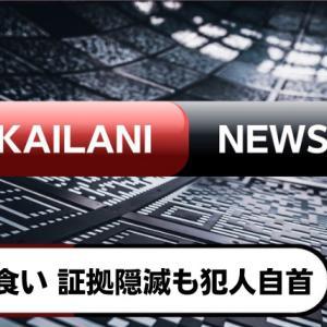【KaiLani NEWS】ご飯盗み食い 証拠隠滅も兄の説得で自首
