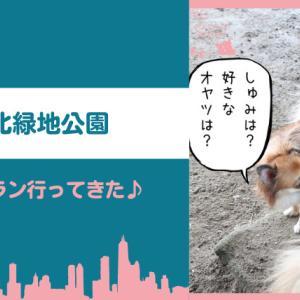 【ドッグラン】深北緑地は無料で小型犬エリアあり!ヘビーユーザーが詳しく紹介