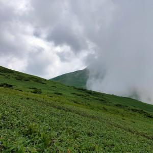 登山してきました!谷川連峰(平標山、仙ノ倉山)