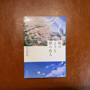 【読書記録#2】カメラを趣味にしている人にはぜひ読んで欲しい「桜のような僕の恋人」