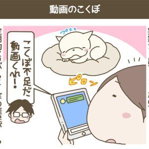 こくぼコラム_part.790〜動画のこくぼ