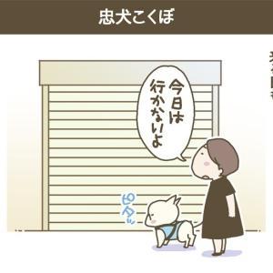 こくぼコラム_part.798 〜忠犬こくぼ【前編】