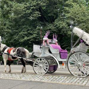 セントラルパークを1周する優雅な馬車ツアーを体験!
