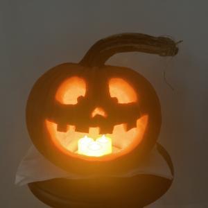 ハロウィン用おばけカボチャを彫る🎃手順を紹介!