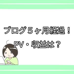 ブログ5ヶ月経過!PV・収益は?
