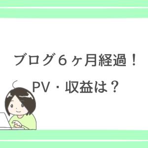 ブログ6ヶ月経過!PV・収益は?