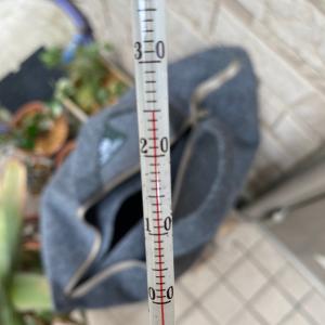 LFCコンの温度も測ってみました。