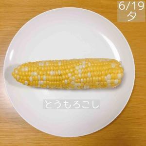 【食事記録】6月19日「止まらなかった間食」