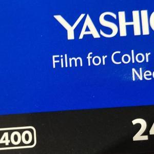 【フィルム作例&撮影レビュー】ヤシカ YASHICA  ISO400 24枚撮り【粒子は大きく温かい写り】