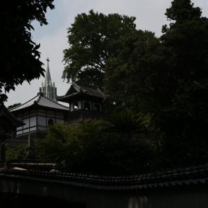 神無月餅の帰省旅行~平戸撮影~
