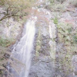 大阪梅田からすぐ行ける自然が多い箕面公園を歩こう