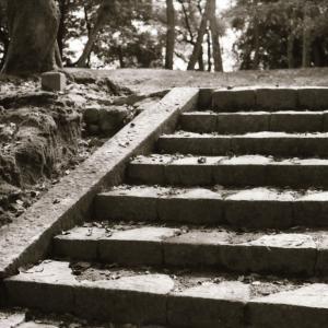 エレベータよりエスカレータより、階段で!!痩せる運動は基礎から。