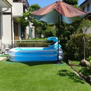 真夏に気を付けたい芝生プール 芝の保護をお忘れなく