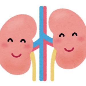 (J-1)16歳(高校1年生)の三男  腎生検を受けました  きっかけは中学校での尿検査でした