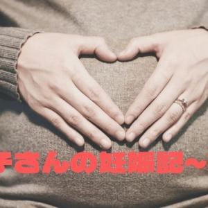 かめ子さんの妊娠記~第3弾 妊娠初期の体とこころの変化
