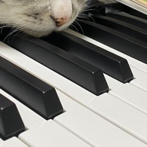 母さんのピアノの時間