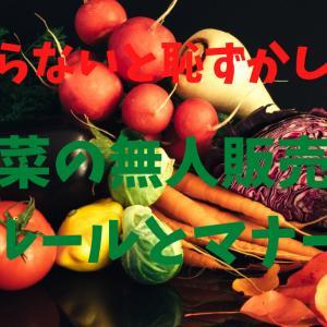 【野菜の無人販売所】田舎でしか見れない?無人販売所で野菜を買ってみました。