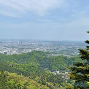 新緑の高尾山に登りました