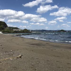 太海海岸の磯遊び&ゴミ拾い