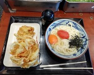 丸亀製麺 めんたいかまたまうどん(並盛)とかき揚げとかしわ天!