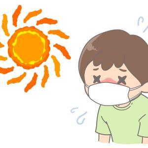 冷感マスクを探して!