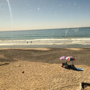 風景を見ていた:アメリカ西海岸