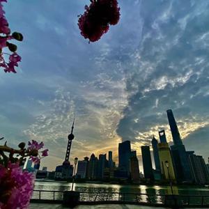 上海の人口密度が高い区トップ3
