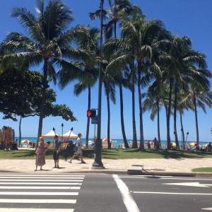 ハワイに行きたい…