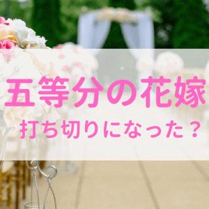 『五等分の花嫁』は打ち切りの噂は本当?その理由は?