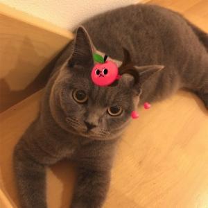 映画評論猫Asari☆「エンドオブザワールド」を語る。シアターアサリ スペシャル第6弾